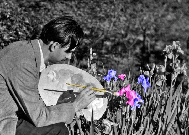 Adobe photoshop c carey cloud painting iris